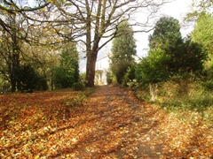 Autumn view of Wainwright House