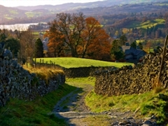 Lake District view near Ambleside